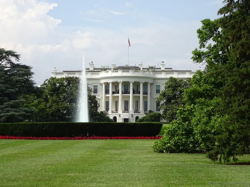 Washington_ (226)