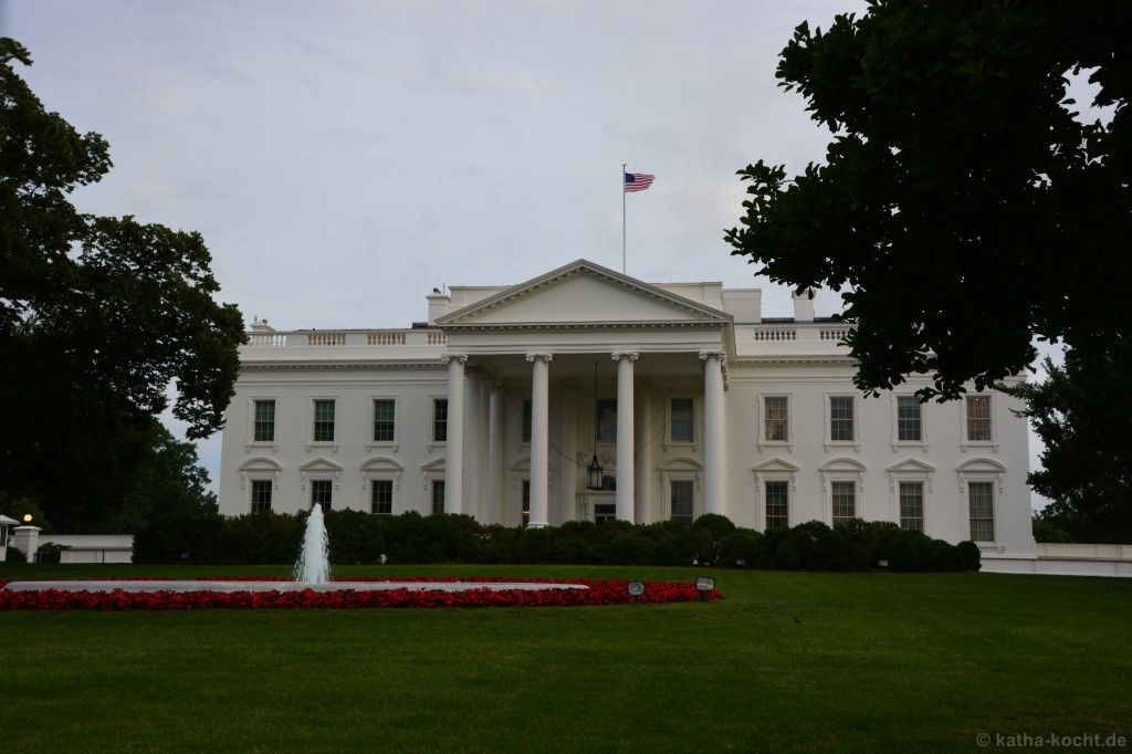 Washington_ (43)