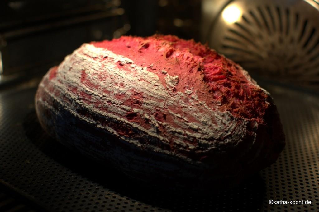Dinkel-Brot_mit_roter_bete_ (8)