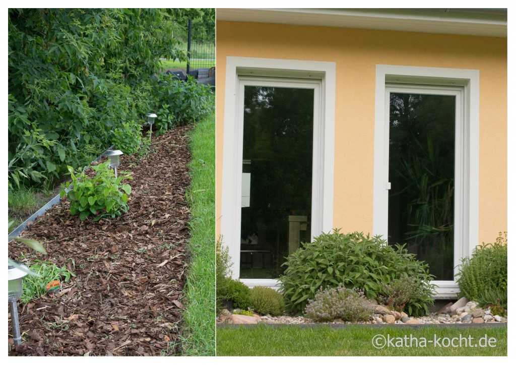 Garteneinblick_Mitte_Juni_8