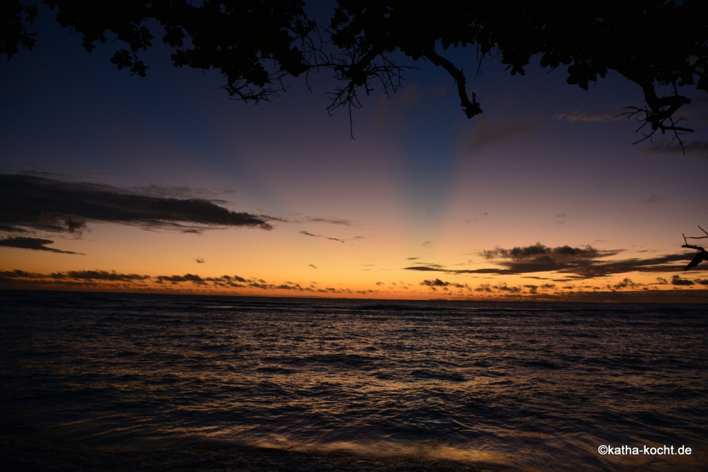Seychellen_ (1025)