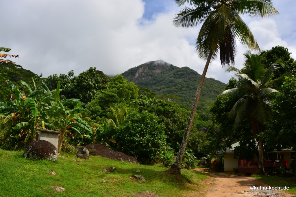 Seychellen_ (808)