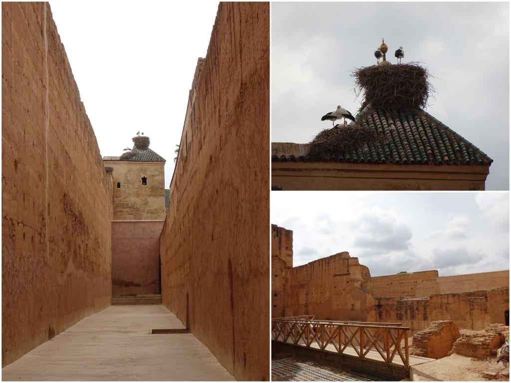 2014-11-14_Marokko6