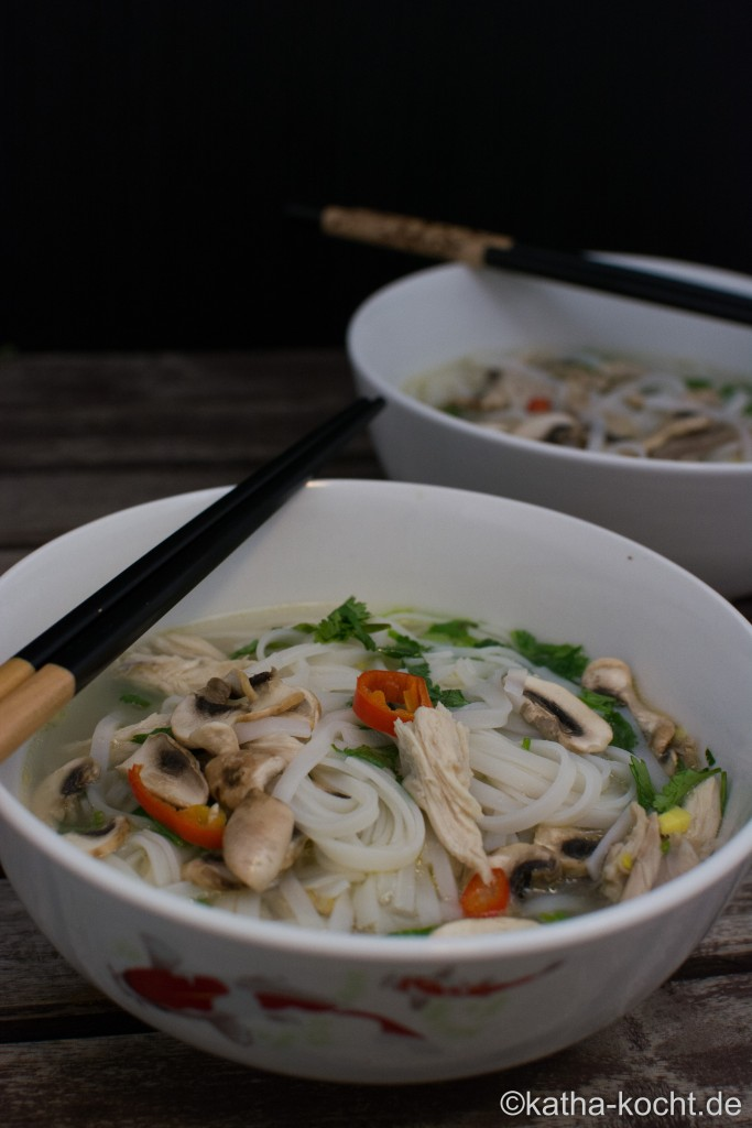 Vietnamesische_Hühner_Suppe_ (4)