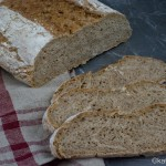 Schnelles Roggenschrot Brot
