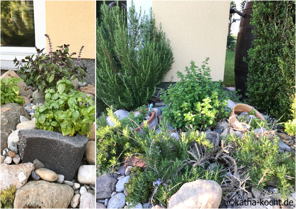 Garteneinblick Juni 2017