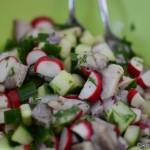 Schneller frischer Matjessalat